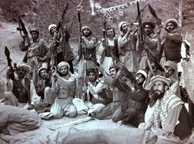 Mujahideen afghanistan 1984