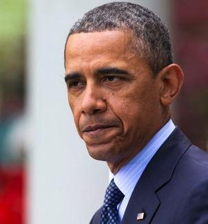 Barack obama gun control ap 328