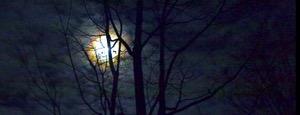 Moonlight top2